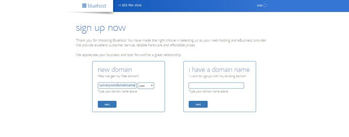 blue host page after select package plan to enter domain