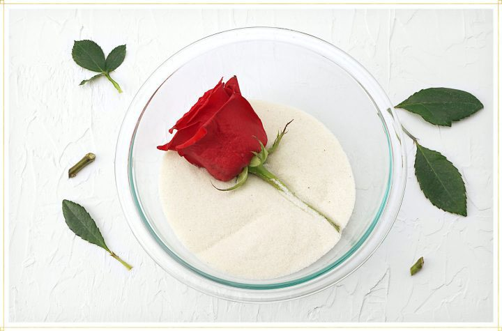 how to dry a rose in a clear bowl of silica sand or gel