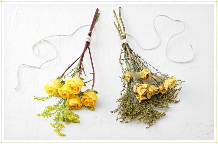 comparison of live bouquet and air dried bouquet of roses